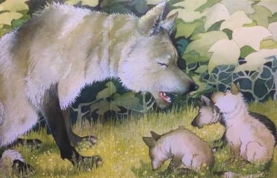 """""""E' ora di andare a nanna"""" di Timothy Knapman (testo) e Helen Oxenbury (illustrazioni). Mondadori 2016"""